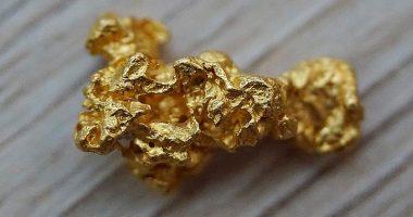Con il suo metal detector trova 60mila euro in oro