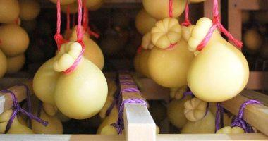 Caciocavallo impiccato ecco una gustosa tradizione del sud Italia