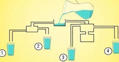 Quale bicchiere si riempie prima Un vero test visivo