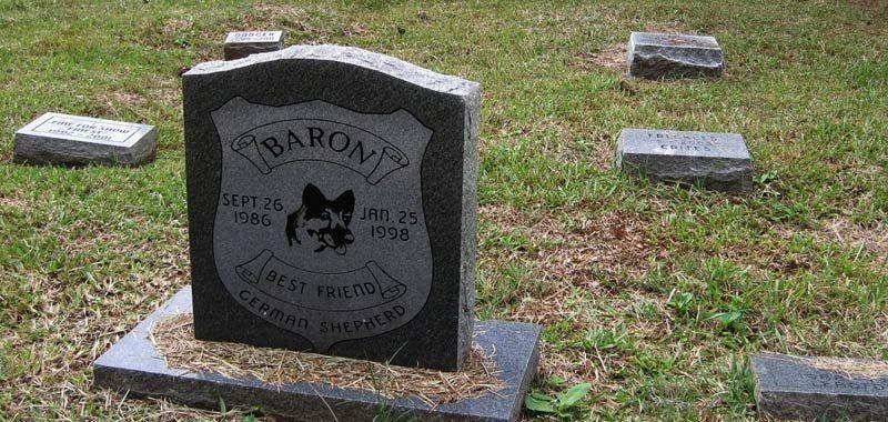 Da ora gli animali potranno essere sepolti con i loro padroni