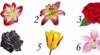 Il fiore che scegli rispecchia la tua personalita