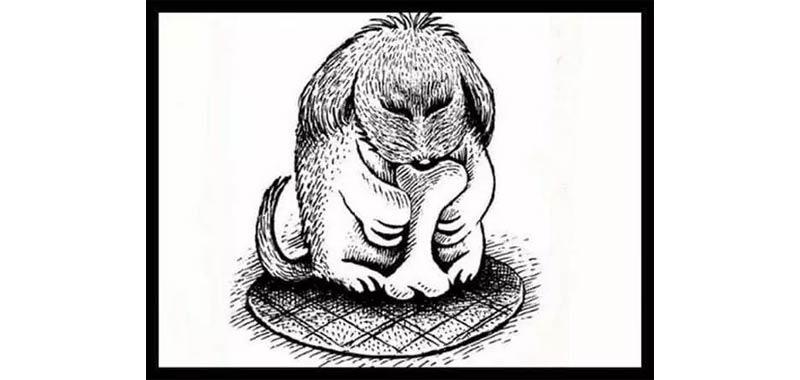 enigma animale nascosto nel ritratto