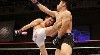 MMA, lo sport di tendenza che piace a tutti