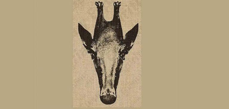 Test visivo: Riesci a vedere i due animali in foto?