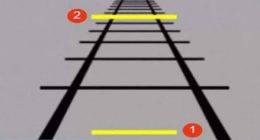 Illusione-ottica-Quale-linea-piu-lunga