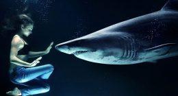Polinesia squalo le strappa il seno mentre nuota con i delfini