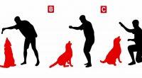 Test psicologico Chi non e il proprietario del cane