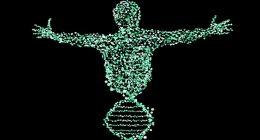 Uomo chimera prima mutazione di DNA dopo un trapianto
