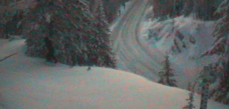 Yeti altro passaggio catturato da una webcam di servizio