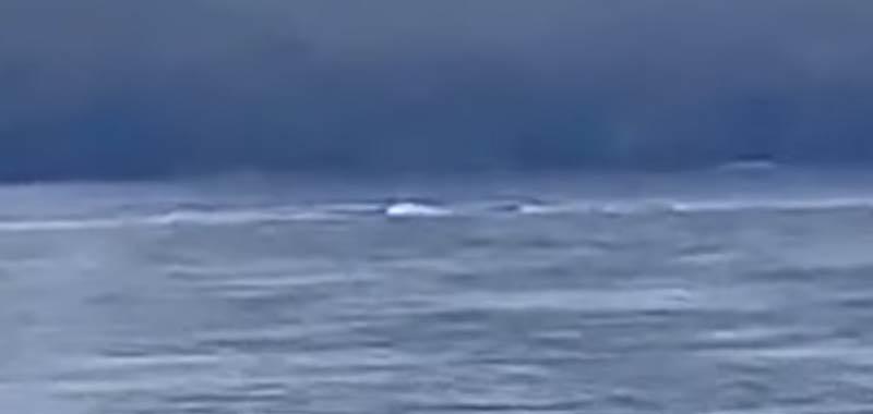 Nahuelito avvistato il mostro di Loch Ness argentino