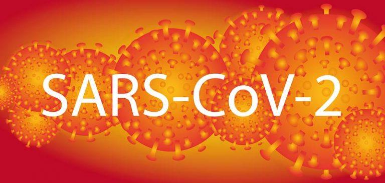 Coronavirus in Italia, lo aveva predetto Nostradamus?