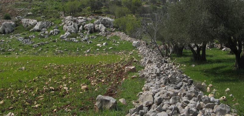 Ebal incredibile scoperta sul monte citato nella Bibbia