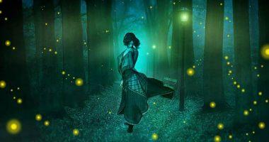 Luciferina ecco come fanno le lucciole ad illuminarsi