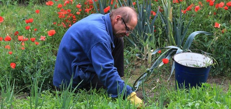 Coronavirus e isolamento evitare bricolage e lavori di giardinaggio
