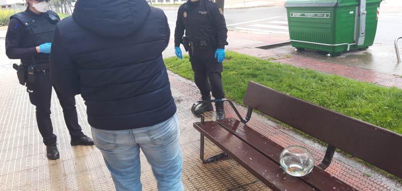 Spagna Porta a spasso il suo pesce rosso durante la quarantena