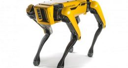 Cane robot utilizzato per ricordare alla persona il distanziamento