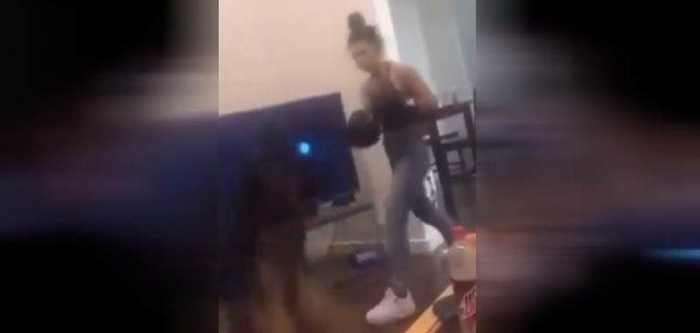 Fa boxe con il suo cane, scoppia l'indignazione sul web