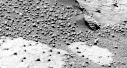 Rapporto scientifico conferma sono presenti funghi su Marte