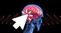 Scienziati Ecco immortalita trasferendo il cervello in un corpo giovane