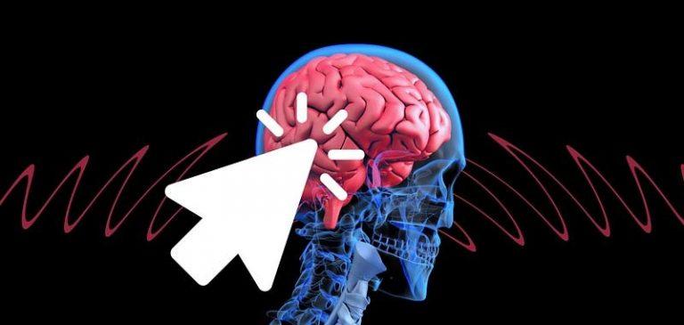 Scienziati: Ecco immortalità trasferendo il cervello in un corpo giovane