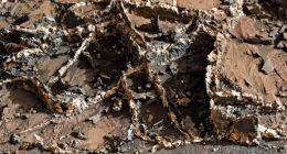 Incredibili rovine di un antico edificio su Marte