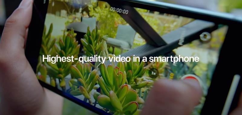 iPhone 11 arrivano segnalazioni di strisce verdi sullo schermo