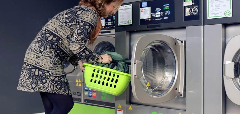 Gatto si addormenta in lavatrice fa un ciclo di lavaggio completo