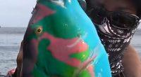 Tira su un pesce mai visto prima lo chiamano Avatar