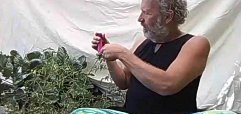 Utilizza metodo molto singolare per far crescere le sue piante