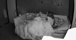 Controlla il baby monitor e vede una scena agghiacciante