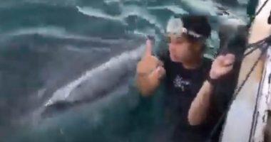 Selfie estremo finisce in bocca ad uno squalo balena