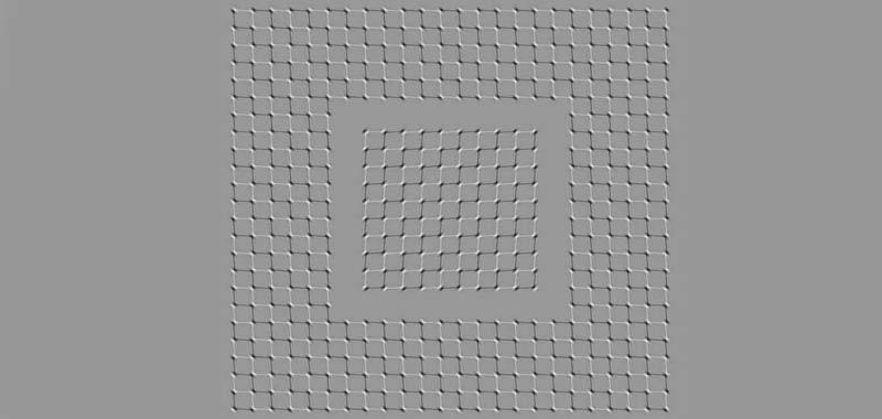 immagine che sembra muoversi fa impazzire il web