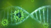 Coronavirus potrebbe sparire da solo improvviso