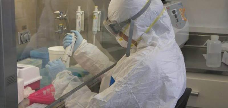 Chapare il nuovo virus che si diffonde in Sud America