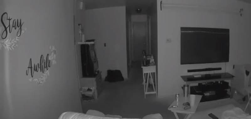 Video telecamera di sicurezza mostra una scena inquietante