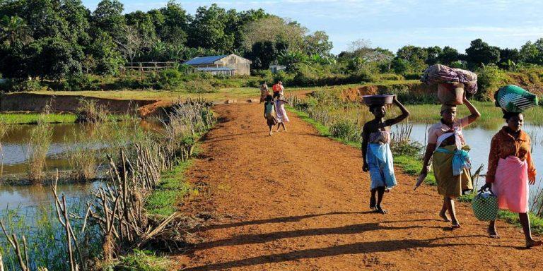 Madagascar, popolazione affamata mangia l'argilla