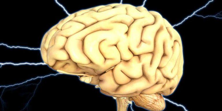 Scienziati rivelano: non abbiamo bisogno del cervello per dormire