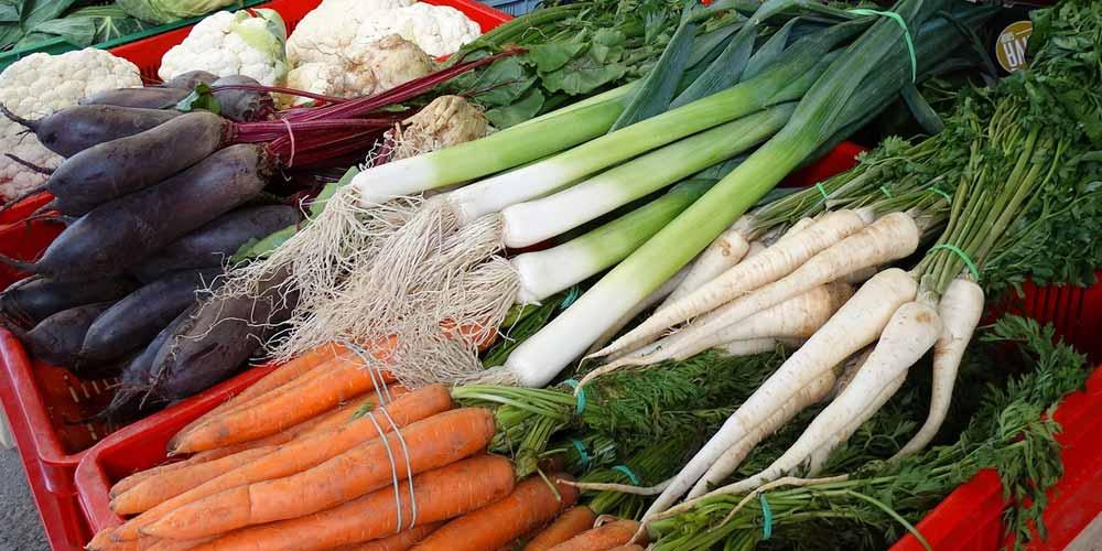 Demenza Le proteine vegetali riducono il rischio