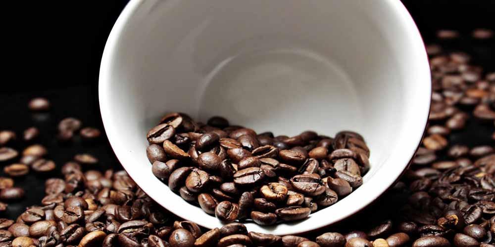 La caffeina fa diminuire la materia grigia nel cervello