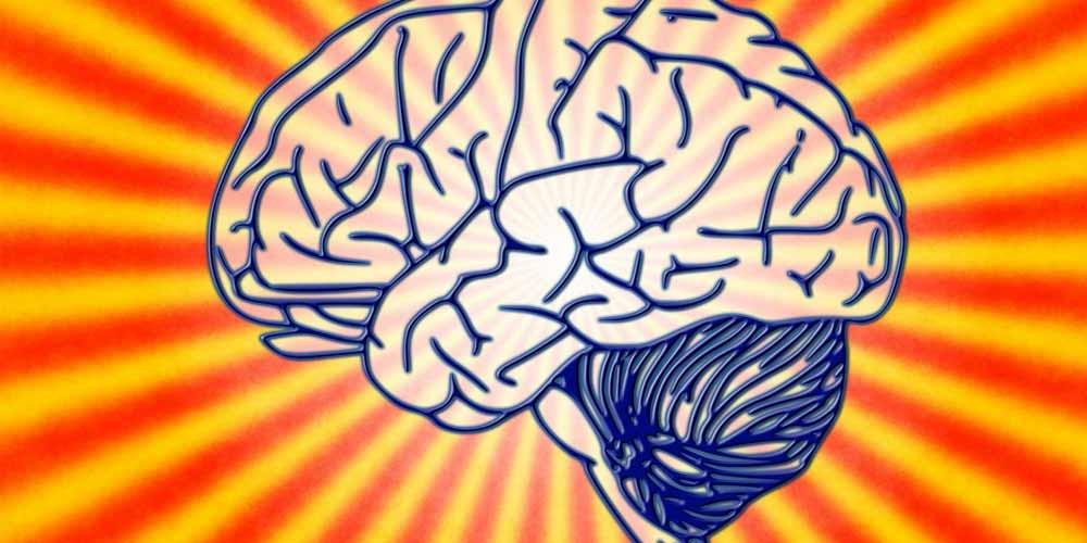 Longevita cerebrale come possibile allungarla