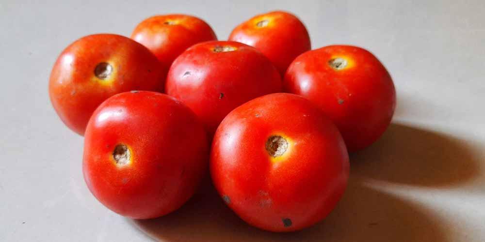Pomodori e sgombro alimenti utili contro invecchiamento