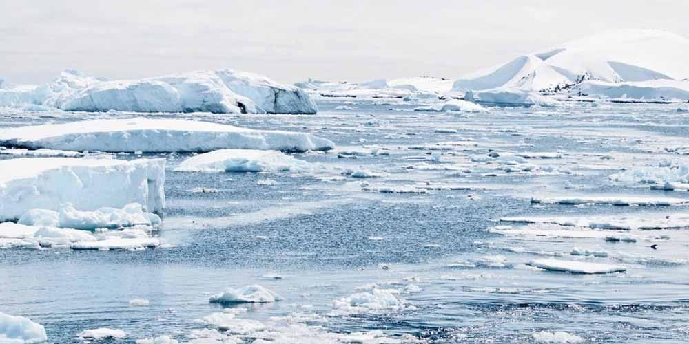 vita sotto gli spessi strati di ghiaccio in Antartide