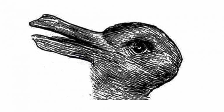 Anatra o coniglio, il test psicologico nato nel 1892