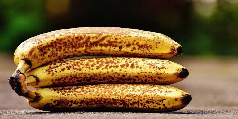 Banane, quanti benefici per il nostro organismo