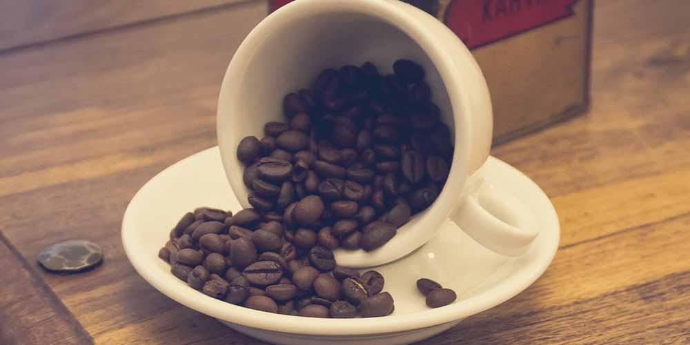 Caffe macinato contiene scarafaggi il video diventa virale