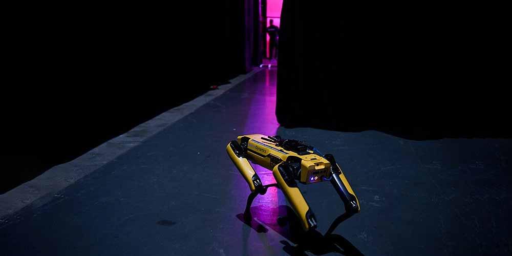 Francia esercito si allena con dei cani robot