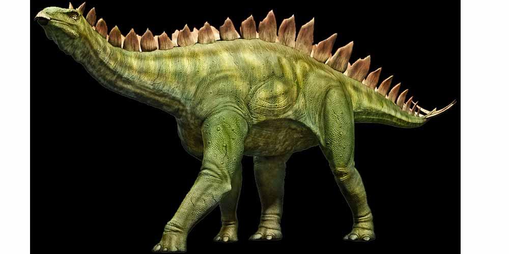 Scoperta scientifica Esisteva un dinosauro grande come un gatto