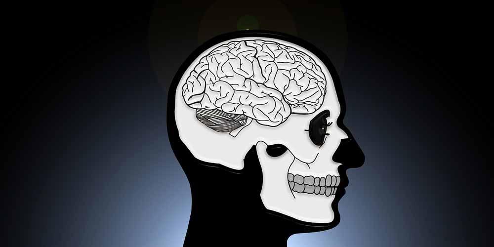 Cervello resta attivo dopo la morte di una persona