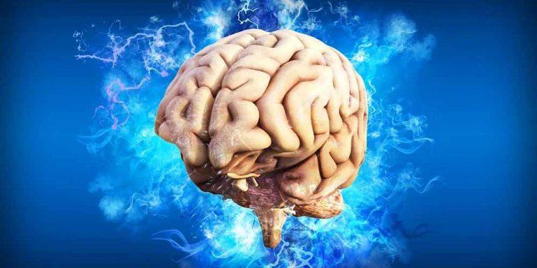 Ma davvero utilizziamo solo una parte del nostro cervello?