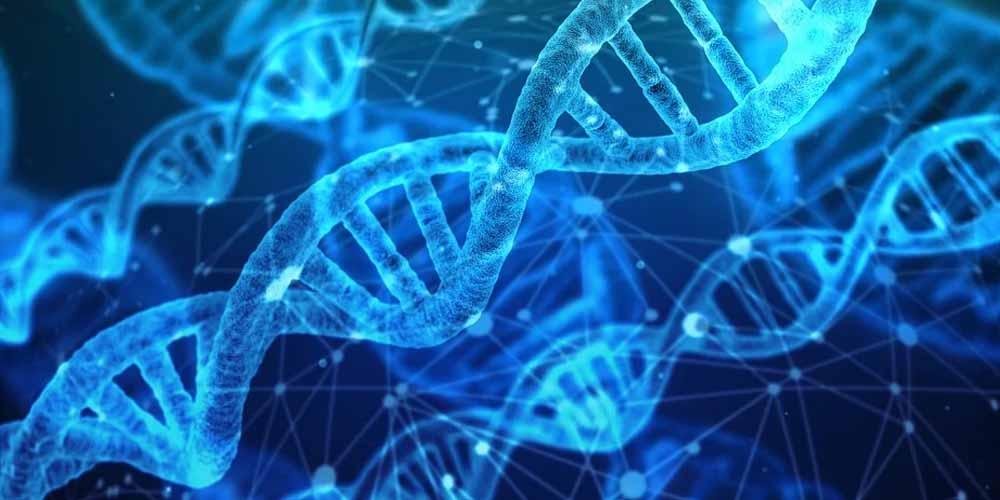 Scienza conferma Nel DNA umano esiste la telepatia
